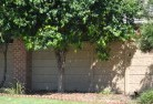 West Scottsdale Barrier wall fencing 5